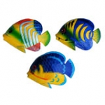Wall hanger - Tropical Fish 12 cm